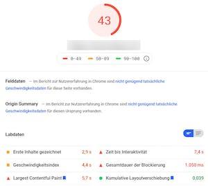 Page Speed und Web Vitals einer Website für Mobil.