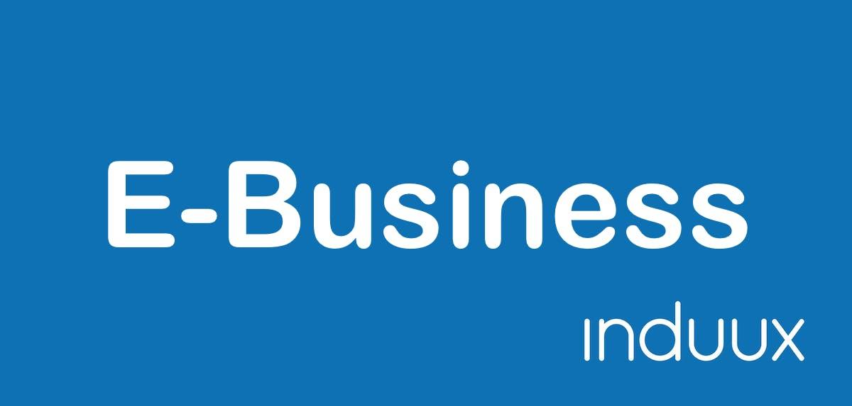 E-Business Zusatzinfo 2169