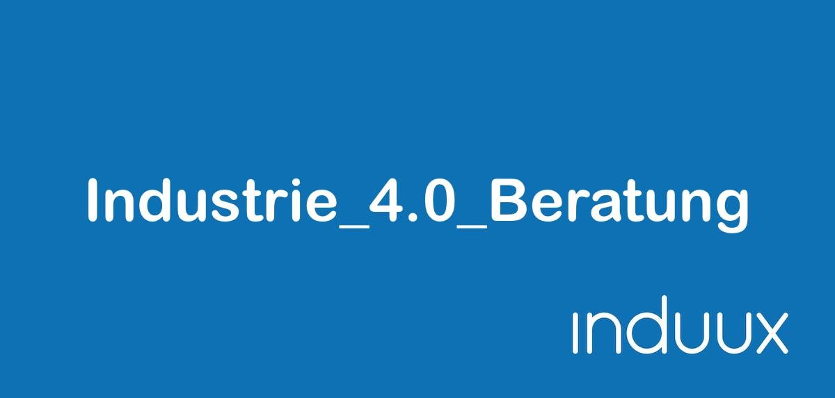 Industrie_4.0_Beratung Zusatzinfo 371