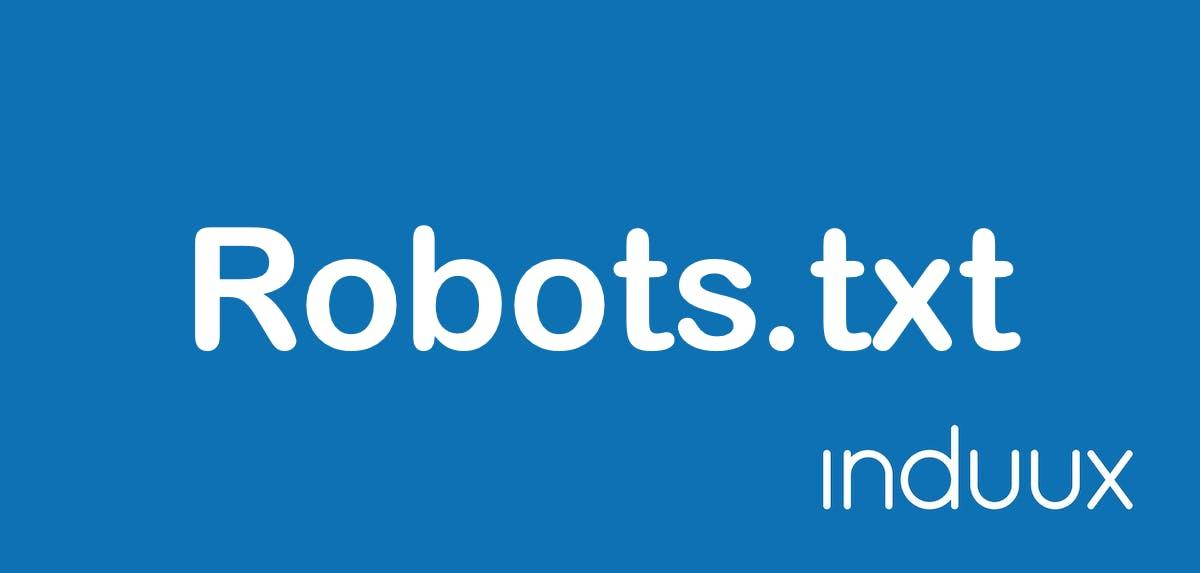 Wofür wird eine robots.txt benötigt?