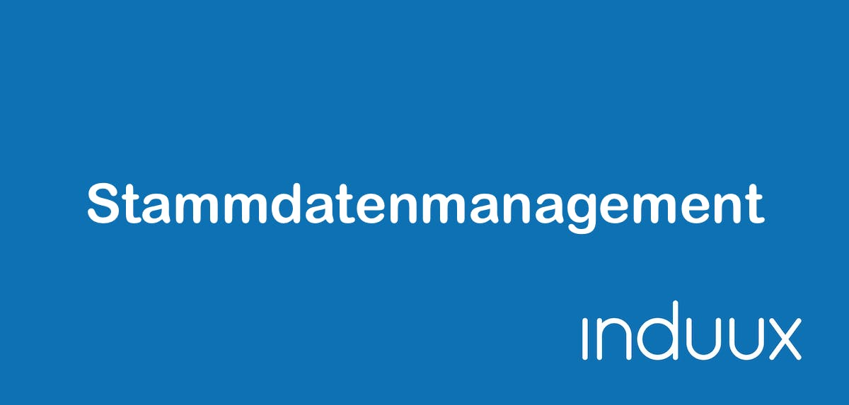Stammdatenmanagement, Master Data Management