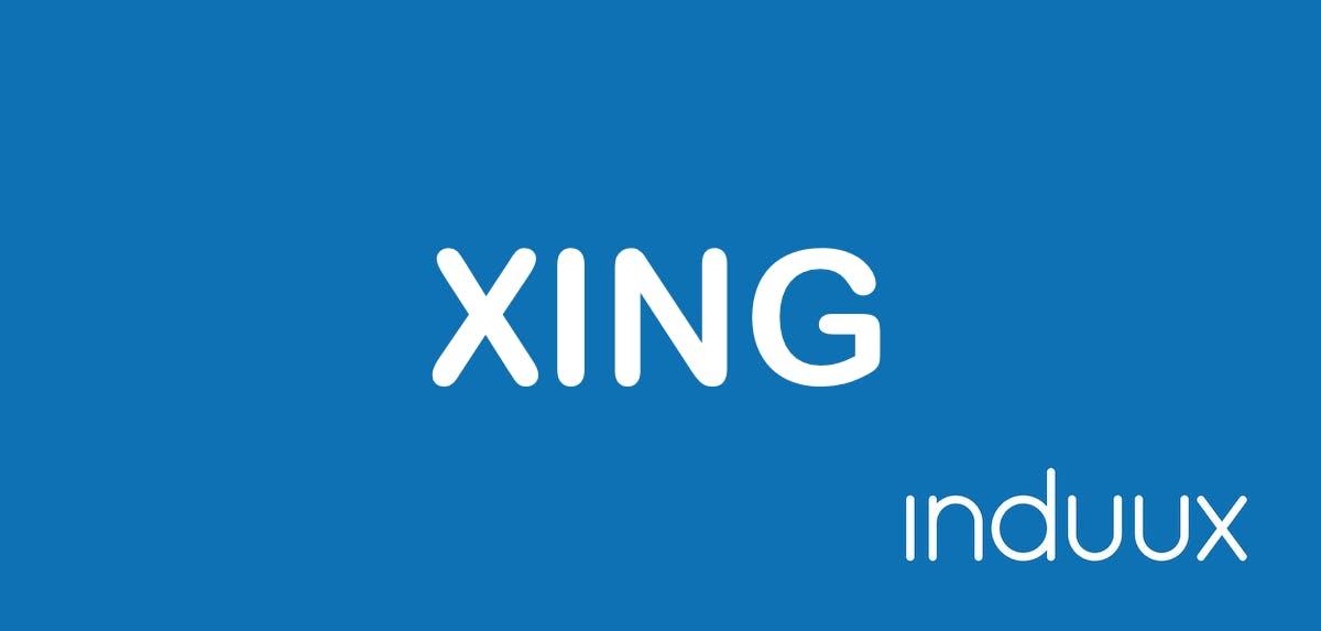 XING: Funktion, Netzwerke, Profile